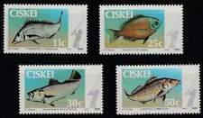 Ciskei postfris 1985 MNH 70-73 - Vissen / Fish