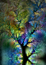 Fractal Art psychedelic original trippy colourful colorful