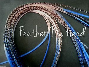 Ombre Tie Dye  Feather Extensions Real Grizzly Rooster Feathers In Bright Colors