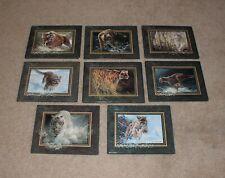 Bhg-Bradford Exchange Big Cats Vanishing Treasures set of 8, all Coa's & Boxes