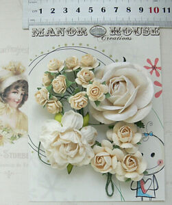 IVORY ROSES - 15 Flowers 1 Tones 4 Styles = PAPER  Flowers 15-50mm 25mm High VC3