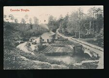 Gloucestershire Glos COOMBE DINGLE Used 1909 PPC