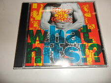 CD RED HOT CHILI PEPPERS – What Hits?!