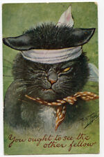 """Thiele Cat """"You Ought to See the Other Guy"""""""