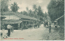 "CEYLON, ca. 1910, superb mint b/w pc ""Road to Mount Lavinia, Colombo"", very rare"