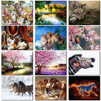 Canvas DIY Digital Oil Painting Kit Paint by Numbers No Frame Home Deco RLQ