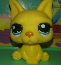 Littlest pet shop Yellow french bull dog #2602 100% Authentic