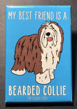 Bearded Collie Magnet Handmade Puppy Dog Gifts Refrigerator and Locker Decor