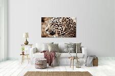 Wandtattoo Wandsticker Aufkleber Leopard Grösse: 120 x 70 cm