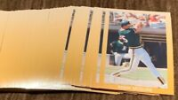 "50) MARK McGWIRE 1990 Broder ""BAY CITY SLUGGERS""  (#3 of 5) Baseball Card LOT"