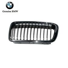 BMW E38 740i 740iL 750iL 1998 1999 2000 2001 Grille (Chrome Tipped Center)