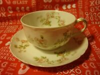 """Antique Haviland & Co Limoges """"THE FRONTENAC"""" Teacup And Saucer Fine China   357"""