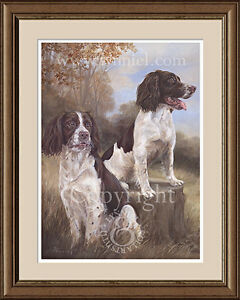 SPRINGER SPANIELS fine art dog print by Lynn Paterson