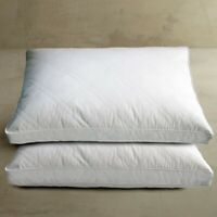 White Goose Feather Down Jumbo Pillow 2 Pack Sleeping Pillows 100% Cotton Cover