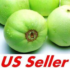20+ Seeds of HEIRLOOM JAPANESE SWEET MELON E64, MUSKMELON Green Cantaloupe