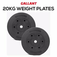 """Weight Plates Standard 1"""" Vinyl Dumbbell Discs Gym Muscle Training Exercise Set"""
