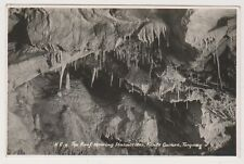 Devon postcard - The Roof showing Stalagtites, Kents Cavern, Torquay - RP(A1098)