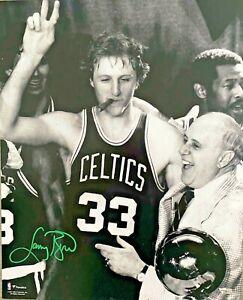 Boston Celtics Larry Bird W/Auerbach Signed 16x20 Photo Cigar Fanatics Holo