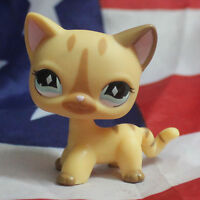 Littlest Pet Shop #886 RARE Short Hair Cat Cream Diamond Stripe Standing LPS