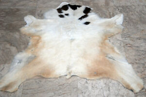"""Calfhide Rugs Area Cow Skin Leather Cow hide ULG 50112 (28"""" X 31"""" )"""
