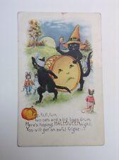 Whitney Halloween Poem Black Cats Drumming Dressed Mice Embossed Postcard