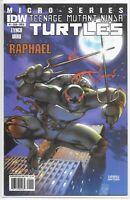 Teenage Mutant Ninja Turtles Micro-Series 1 Raphael 1st Alopex B Urru Variant