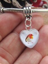 Robin Charm Christmas Gift. Will Fit Pand*ra. Bracelet Not Included Valentines