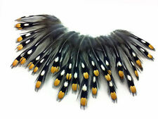 10 Pieces - Small Natural Gold Jungle Cock Eye Loose Feather