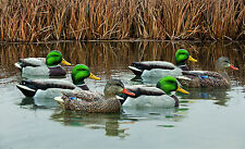 Avian-X Top Flight Open Water Mallard Floater Waterfowl Hunting Duck Decoys New!