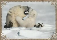 Modern-Wide-Linen-Bears-P1-Mother&Cub In Snow-Swap Playing Card