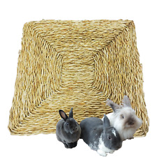 Large 12x12 All Natural Seagrass Mat Bunny Rabbits, Chinchillas, Parrots, Birds