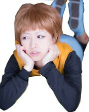 Cosplay Wig for The Seven Deadly Sins Harlequin King