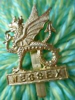 Staybrite Wessex Infantry Brigade Regiment Cap Badge Anodised maker MW TIMINGS L
