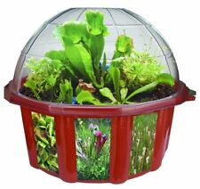 NEW Dome Terrariums Carnivorous Plants FREE SHIPPING
