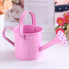 Watering Can Plant Spray With Handle Gardening Tools Metal Wrought Iron Shower