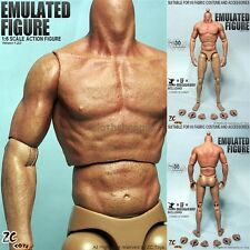 """ZC Toys 1/6 Seamless Muscular Figure Body 2.0 Similar to TTM19 For 12"""" Hot Toys"""