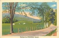 Springfield Vermont~Cows in Pasture~Postcard Greetings~1938 Linen Postcard