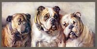"Phillip Stretton, 3 English Bulldogs, 3 Graces, antique decor, 20""x10"" Art Print"