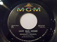 Herman's Hermits Last Bus Home / Museum 45 1965 MGM Vinyl Record