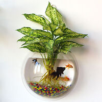 Fish Wall Mounted Bowl/Aquarium Wall Hanging Tank/ Plant Bubble Bowl Decoration