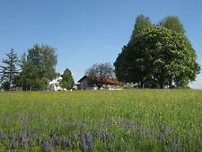 Urlaub Ferienwohnung Ferienhof Bauernhof Land! 1 Woche Bayern