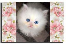 GREETING CARD Cute White Blue Eyed Kitten Persian Angora HANDMADE Satin Finish