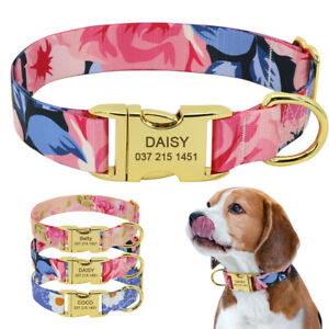 Floral Personalized Dog Collar Gold Buckle Pet ID Name Engraved Nylon Collars