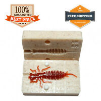 Larva Mold Fishing Lure Bait Mold DIY Soft Plastic Bug 50 mm 2 in
