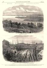 Auriferous Quartz at Laidlaw's Farm, near Halifax, Nova Scotia   -   1862