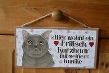 Türschild Tierschild Schild Tafel Holzschild Deko Bild Katze Britisch Kurz NEU