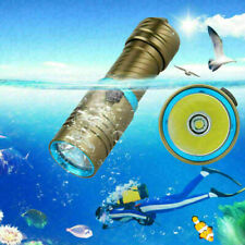 10000LM XM-L T6 LED Diving Scuba Flashlight Underwater 100M Torch 18650/26650