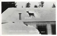 A71/ Mill Creek California Ca Postcard Real Photo RPPC c50s Deer Creek Lodge