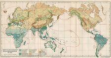 B6157 Spread of major plant in the hearth - Carta geografica del 1890 - Old map