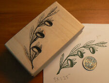 "Olive branch 3x1.5"" WM rubber stamp P11"